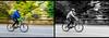 Central Park - Fall 2017-34.jpg (jbernstein899) Tags: newyorkcity blackandwhite centralpark