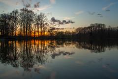 Horst - Castle pond (de_frakke) Tags: sundown zonsondergang horst sintpietersrode vlaamsbrabant hageland belgium belgië landschap