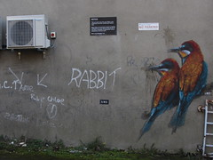 Basic zoological fail (shaggy359) Tags: stamford lincolnshire lincs grafitti rabbit bird birds hummingbird painting painted wall air conditioner notice sign signs no parking two pair