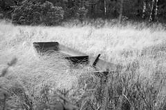 Abandoned skiff (Anders Bromell) Tags: fs171126 overgiven fotosondag skiff abandoned