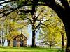 the little chapel (mujepa) Tags: chapelle saintpierre villersstoncourt arbres automne