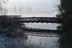 Sussex Creek bridge at King tide (D70) Tags: foreshorepark burnaby bc canada sussex creek bridge king tide