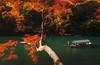 boatsman (Matt Shiffler Photography) Tags: kyoto kyotojapan temple japanesetemple japan japanese river arashiyama bamboo forest arashiyamabambooforest traveler adventure explore explorer geisha streetphotography autumn fall kyotofall kyotoautumn