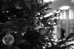 Weihnachts-Selfie @ Work (andwest) Tags: selfie bbb baden berufsschulebbb weihnachtsbaum aargau berufsschulebaden fujifilm fujixt20 fujinonxf23mmf14r