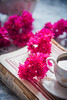 Flowers (color and spices) Tags: tea chai flower stilllife morning winter foodphotography foodstyling