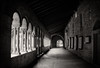 Cloister of the San Zeno basilica (Tigra K) Tags: verona veneto italy it 2011 architecture bw ceiling church cloister column court gate lattice medieval repetition rhythm romanesque roof shape texture wood arch pattern