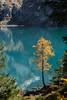 Oeschinensee_iv (pcordonier) Tags: oeschinensee kandersteg mountain lake bern switzerland