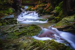 Neumannsgrund (uschmidt2283) Tags: herbst landschaften langzeitbelichtung laub natur thüringen wald wasser