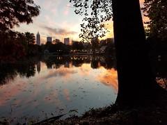 Piedmont Park, Atlanta Georgia - 22 (Laura Grace) Tags: 2017 atl atlanta autumn fall ga georgia lakeclarameer midtown november park piedmontpark solowalkshikes walksandhikes