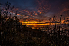 Cliffsend at Dawn (@bill_11) Tags: pegwellbay unitedkingdom isleofthanet sunrise kent england
