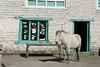 IMG_9775 (neil grandison) Tags: langtang nepal building structures horse teahouse