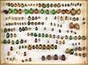 Unidentified Rutelinae box 5 (Biological Museum, Lund University: Entomology) Tags: coleoptera scarabaeidae rutelinae