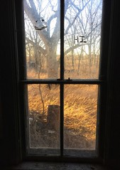 you had me at hello...(truth or consequences house) (Aces & Eights Photography) Tags: abandoned abandonement decay ruraldecay oldhouse abandonedhouse hello hihowareya