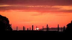 Good morning, Tamanuitera (ajecaldwell11) Tags: xe3 awatoto sunrise ankh water celestialcompass pou light sun hawkesbay newzealand napier sky silhouette dawn caldwell ateaarangi clouds