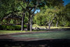 My Back Yard..:) (Jims_photos) Tags: wimberleytexas texas trees unitedstates outdoor outside adobelightroom adobephotoshop shadows daytime jimallen jimsphotos jimsphotoswimberleytexas lightroom landscape nopeople nikond750