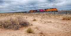 R-Railfan_1172017-271_HDR-Edit.jpg (Photo Rob2) Tags: mohave locomotive arizona bnsf ferromex tier4 kingman transportation roadnames city trains unitedstates diesel county states