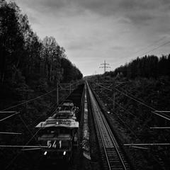 541 (Andrea Schuh) Tags: blackandwhite
