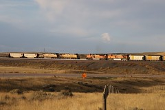 """Its a Sunday Morning """"go to meetin"""" kind of day (kschmidt626) Tags: powder river wyoming union pacific bnsf burlington coal train c"""