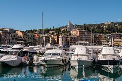 Santa Margherita Ligure (Jose Antonio Abad) Tags: agua joséantonioabad liguria arquitectura puerto barco pública italia mar santamargheritaligure paisajeurbano it
