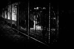 IMG_6709 (Matheus.Fernando) Tags: street rua nice predios edifício building trees models model sol rio evento preto e branco black white viking