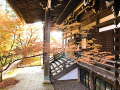 Shinnyodo 真如堂. Kyoto (H.L.Tam) Tags: photodocumentary japan sketchbook iphone iphoneography japanese 日本 紅葉 documentary shinnyodo kyoto 真如堂 iphone8plus autumn 京都