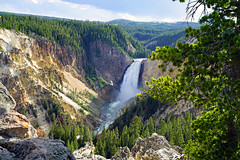 Lower Falls from Lookout Point, Yellowstone NP, USA (Andrey Sulitskiy) Tags: usa wyoming yellowstone