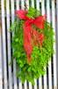 'Tis The Season (Neal D) Tags: bc surrey crescentbeach decorations christmas fir bow