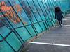 Turquoise (Ulrich Neitzel) Tags: cyan diagonal frau geländer girl graffiti grünspan hamburg landungsbrücken lines linien mzuiko1240mm mädchen olympusem1 stairs street treppe turquoise verdigris woman