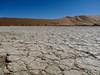 IMG_4188 (klaeui) Tags: namibia sossusvlei desert wüste wueste saltpan salzsee