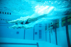 20171202-swimming-divers-underwater-7K0A9208