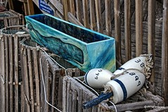 Boothbay (pandt) Tags: buoys buoyant boothbayharbor maine coast coastal lobster trap whale blue white numbers fishing canon eos slr 7d hdr outdoor