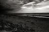 Ogunquit (johnlishamer.com) Tags: 2017 35mm atlanticocean bw fujineopan400 fujifilm lishamer maine nikonf3 ogunquitmaine slr clouds expiredfilm film johnlishamercom roadtrip summer vacation