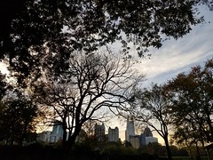 Piedmont Park, Atlanta Georgia - 10 (Laura Grace) Tags: 2017 atl atlanta autumn fall ga georgia midtown november park piedmontpark solowalkshikes walksandhikes