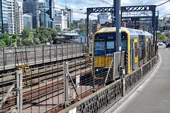 Sydney Trains - Tangara Set T82 crosses the Harbour Bridge (2) (john cowper) Tags: bline northernbeaches northshoreline sydneyharbourbridge tangara sydneytrains t83 topdeck frontseat kirribilli bradfieldhighway statetransit transportfornsw sydney newsouthwales