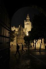 XE3F6208 (Enrique Romero G) Tags: giralda plaza place triunfo sevilla spain night noche nocturna lluvia fuji fujinon18f2 fujixe3