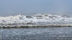 Langeoog -854199 (clickraa) Tags: langeoog ostfriesische insel nordsee northsee deutsche bucht nordseeküste