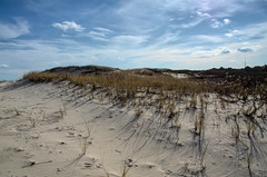 """Sand & Sky"" (Photography by Sharon Farrell) Tags: ibsp islandbeachstatepark islandbeachstateparknewjersey barrierisland islandbeach atlanticcoastline seasidepark seasideparknewjersey barnegatpeninsula berkeleytownship oceancountynewjersey islandbeachnorthernnaturalarea"