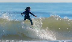 Little Guy Surfing