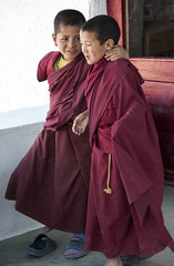 Best friends (bag_lady) Tags: monks novices thikseymonastery monastery gompa buddhism ladakh india bestfriends buddhist
