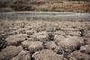 La laguna menguante (miguelangelortega) Tags: sequía laguna lagoon tierra º