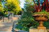 Garden Steps (Fiddling Bob) Tags: staircase steps plant sarahpdukegardens durhamnc