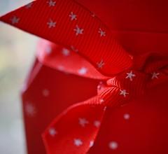 a red bow (quietpurplehaze07) Tags: macromondays buttonsandbows red
