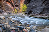 Narrows Pano (David Swindler (ActionPhotoTours.com)) Tags: narrows thenarrows virginnarrows virginriver zion zionnationalpark autumn fall pano panoramic water