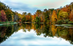 Only in Autumn 2 (Gary Walters (offline for a bit)) Tags: autumn landscape longexposure nature water sonya7r newjersey sony reflections fall colors foliage gary walters
