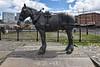 Working Horse Statue. (Cycling Saint) Tags: liverpool merseyside nikond750nikkor1635f4vrll liverpoolstatues wideanglelens workinghorse albertdock