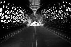 Parkbrug by marikoen - Parkbrug, Antwerp