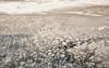 Terra Incognita (Leonid Yaitskiy) Tags: travel terra incognita tiny shelter middle nowhere abu dhabi united arab emirates pow desert nature landscape creative airbourne leonid iaitskyi nikon d610 nikkor 50 yahoo