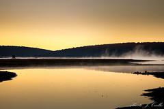 Sunrise fog - Bruma del amanecer (ajcoello) Tags: bruma amanecer fog sunrise mañana morning paisaje landscape