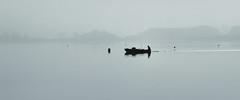 Fade to Grey (fehlfarben_bine) Tags: nikondf nikon7002000mmf40 boat fisherman seagulls lake seascape fog silhouettes reflections mood berlin pano silence