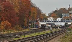 Through Autumn Colours (Deepgreen2009) Tags: clanline farnborough main bulleid pacific steam uksteam station trees colour autumn railway train special tour excursion preserved